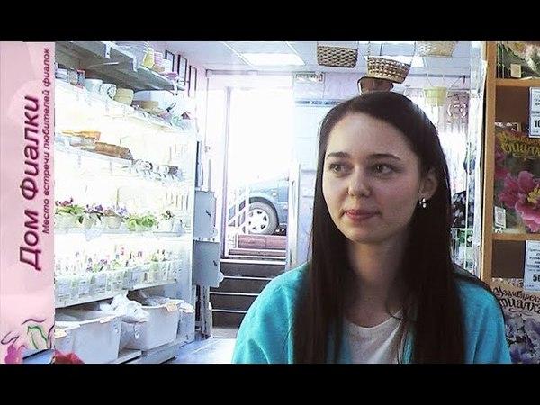 ДФ.Листья сенполии как объект селекции (Я.Ходченко)