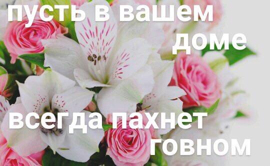 Антон Калягин  