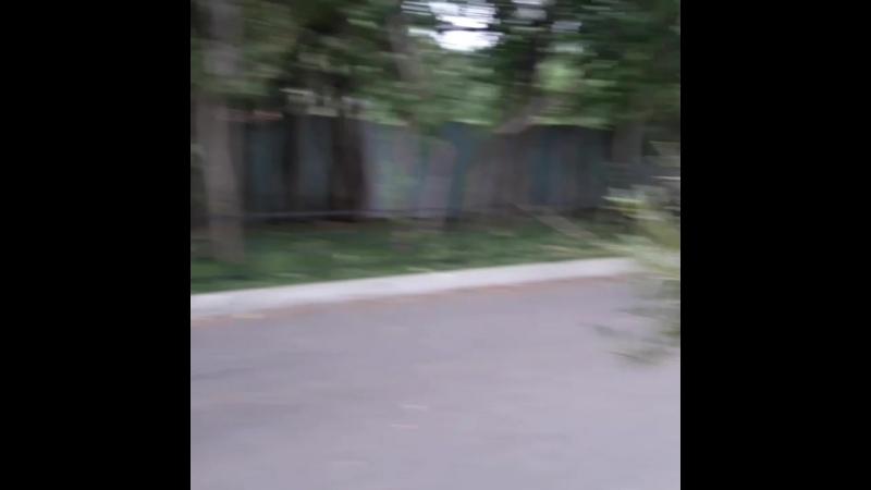 VID_19800416_020239_036.mp4