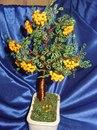 2 ноября 2006 15:20.  Деревья из бисера - отличный подарок и стильое украшение.
