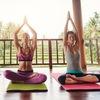 Биомеханика в йоге| регулярно |Аравинда