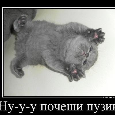 Людмила Неклюдова, 8 марта , Ярославль, id130096751