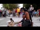 Индеец исполняет музыку Последний из могикан