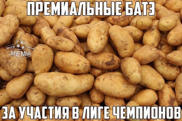 Мемы хабиб 3