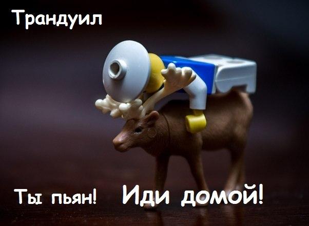 http://cs323127.userapi.com/v323127542/874a/nIOfg3A1Vko.jpg