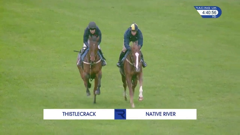 Native River and Thistlecrack shape up for the Betfair Chase with a gallop at Exeter Racecourse