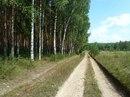Игорь Гнедков фотография #44
