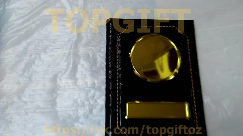 Обложка для автодокументов из змеиной кожи с золотыми вставками