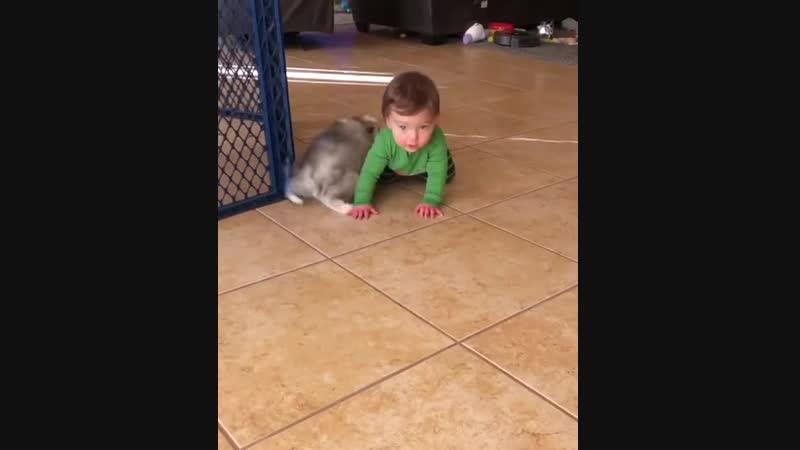 Лучшие друзья с самого детства