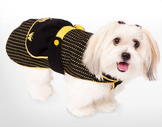 Шьем для собак мастер класс пошагово #9