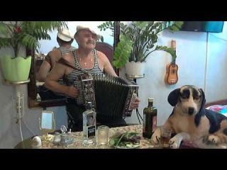 �������� ��� �������. Ditties under the accordion. Limericks unter Squeeze.