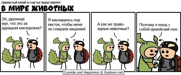 http://cs620117.vk.me/v620117768/d1c3/kSme04Q-vJg.jpg