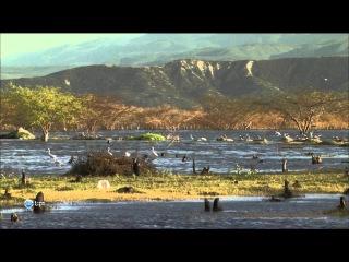 Доминиканская Республика. Карибское сокровище