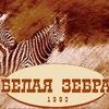 Психологический центр БЕЛАЯ ЗЕБРА. Ижевск