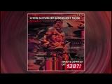 Chris Schweizer &amp Indecent Noise - Signals (Extended Mix)