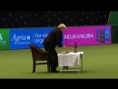 Heelwork To Music - International Freestyle Competition Part 1_3 _ Crufts 2017