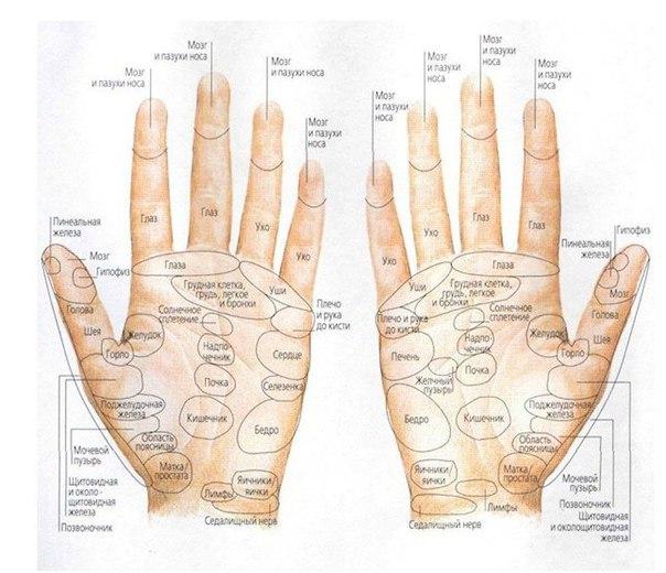 Ваше здоровье в целительной силе ваших рук Оказывается, с помощью целительной силы ваших рук, вполне возможно избавиться от головной боли без лекарств , для этого необходимо лишь освоить простые методы. Рефлексотерапия - это воздействие на биологически активные точки, которые, как известно, являются нервными рецепторами, отвечающими за работу различных органов и систем организма. В результате может нормализоваться давление, снизиться уровень холестерина, повыситься иммунитет. Рефлексотерапия…