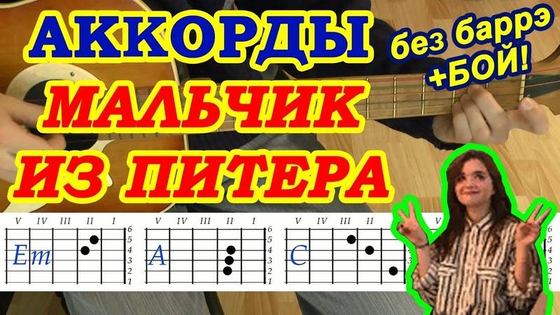 Мальчик из Питера Аккорды 🎸 Алена Швец ♫ Разбор песни на гитаре ♪ Бой Текст