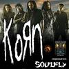 KORN & SOULFLY | 20 мая | НОВОСИБИРСК | 2014