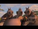 Мультфильм « Мадагаскар (2 часть)