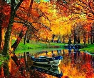 Отцвели цветы, падают листья, птицы молчат, лес пустеет и затихает.ОСЕНЬ. - Страница 6 Djico9Sir_4