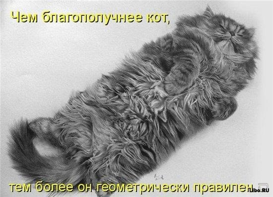 http://cs406131.userapi.com/v406131394/3cf8/kGPO8oZCdGI.jpg