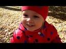 Малышка Зара и тигрёнок Даниэль Играем в догонялки на осенней листве