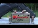 Hornady Critical Defense 380 ACP 90 gr Ammo Test