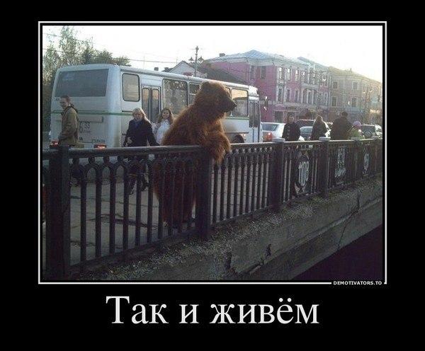 http://cs620919.vk.me/v620919818/88a3/lBvGU7zoqMs.jpg