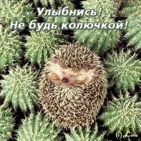 Петр Чугай, 1 декабря , Донецк, id192668426