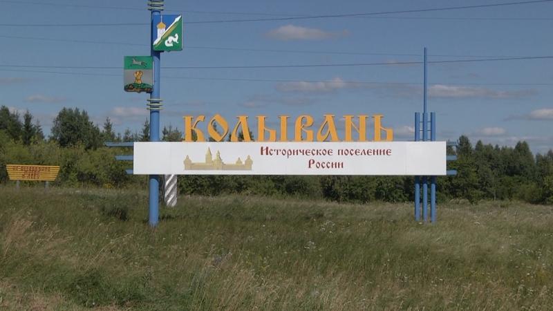 7 августа в поселке Колывань прошел митинг против строительства индюшатника
