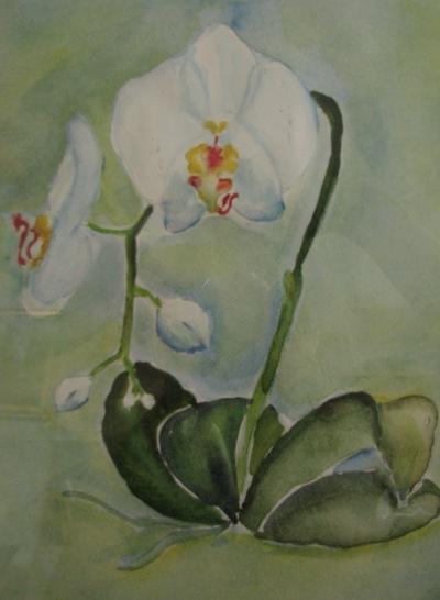 Илона Галеева, 18 апреля , Казань, id166478228