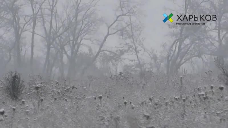 На страже Донбасса_ ополченцев ДНР не пугает военное положение на Украине