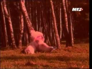 Мумий Тролль - Медведица