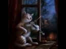 Kemancı kedi