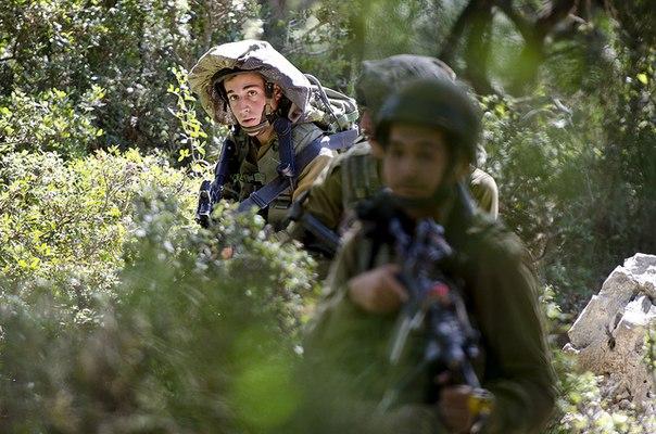لواء Kfir الاسرائيلي .....חֲטִיבַת כְּפִיר KMLX7wYtFH8