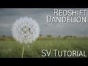 Redshift / C4D / Dandelion / Aerodynamic / Hair