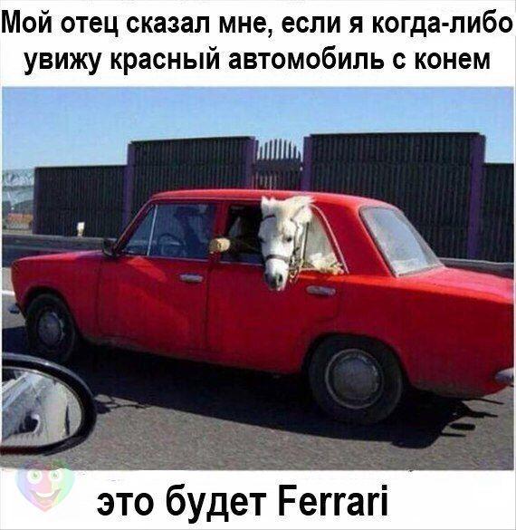https://pp.vk.me/c635101/v635101788/5be4/nu4XPVEm1kM.jpg
