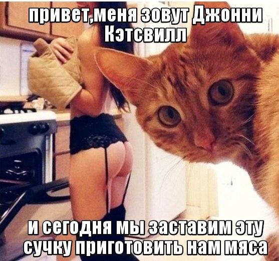 https://pp.vk.me/c7005/v7005949/14a91/YyFMYG5-ur4.jpg