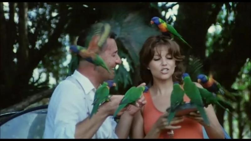 Carmela Bello onesto emigrato Australia sposerebbe compaesana illibata 1971