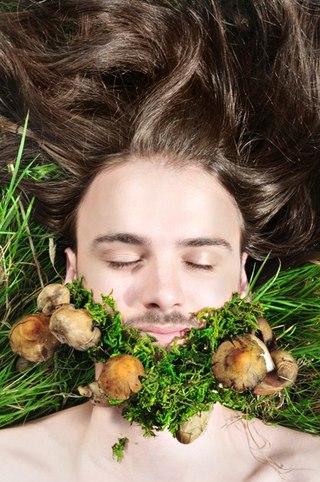 фото гриб борода