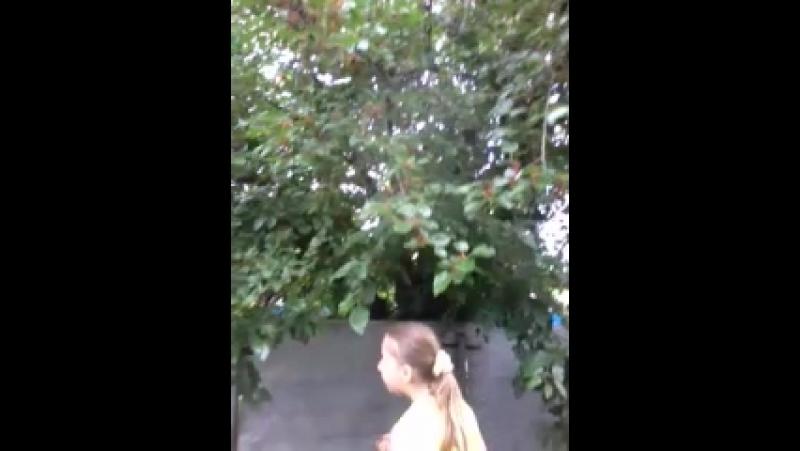 Video-2013-06-02-08-16-11