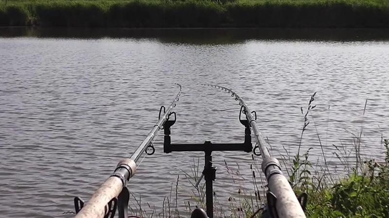 Carp run compilation on Puszta Lake