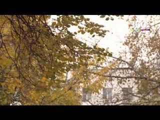 Погода в московском регионе