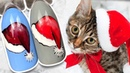 🎅 Новогодняя Шапка 🎅 Зимний Дизайн Ногтей / Рисунок Гель-лаком для Праздничного Маникюра Cosmoprofi