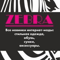zebra_showroom