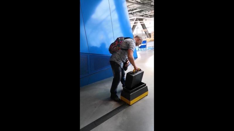 чемодан идет на место