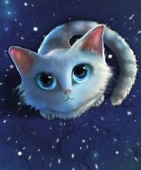 Картинки лунный кот