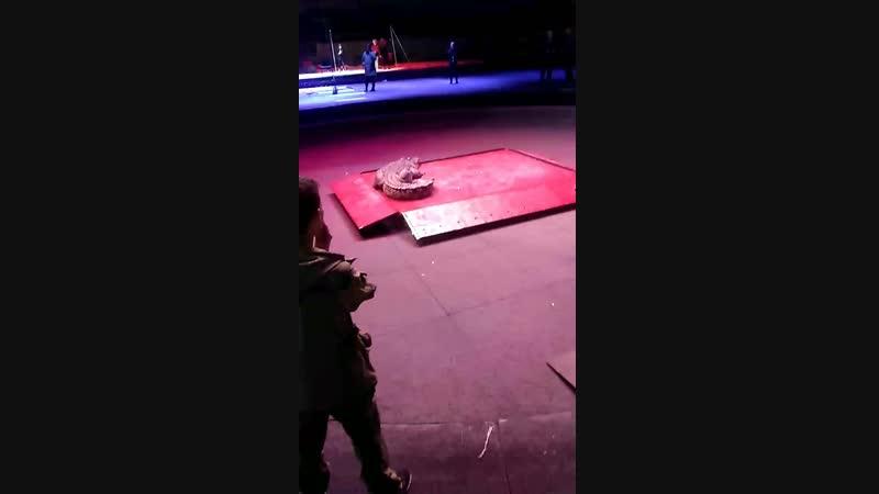 цирк: Магия