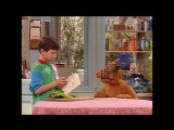 Alf Quote Season 4 Episode 5_Жизнь